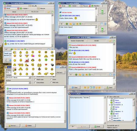 Qip (8070) + скины (23 штуки) + смайлы (установочник) + смешные статусы + конвертор истории + qip pda windows